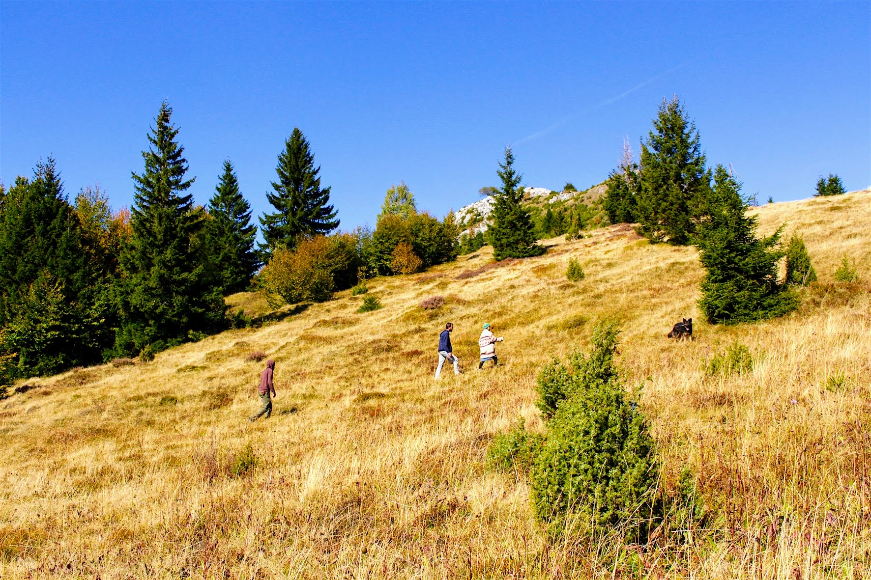 Green Tourism in Vukov Konak - walk on Bosnian mountain